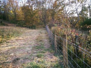 High Tensile fencing