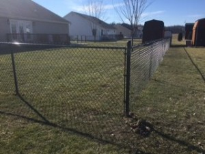 Black Vinly coated fencing